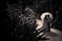 Maldived wedding photography02 (1)