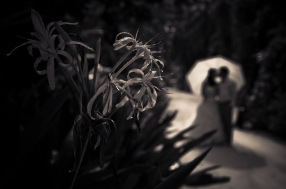 Maldived wedding photography02 (1)